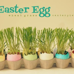 Recycled Easter Egg Wheat Grass Centerpiece