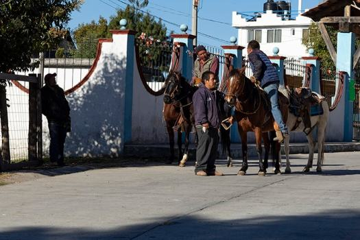 Vaqueros and their horses in Macheros, Mexico.