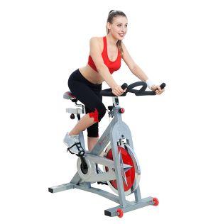 Sunny Health & Fitness - SF-B901