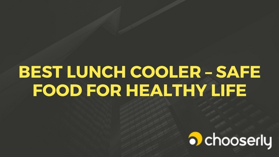 Best Lunch Cooler Safe Food for Healthy Life
