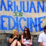 W USA wszystko jest możliwe: Praca na farmie marihuany w Kalifornii
