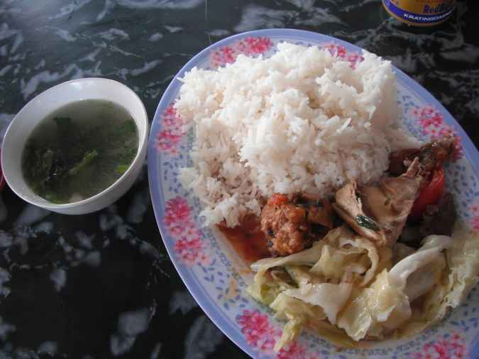 Rice with various meats and vegetables at a bus stop on the way to Vientiane.