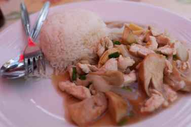 Stir fry chicken and mushrooms in Bangkok, Thailand.