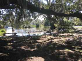 City Park in New Orleans.