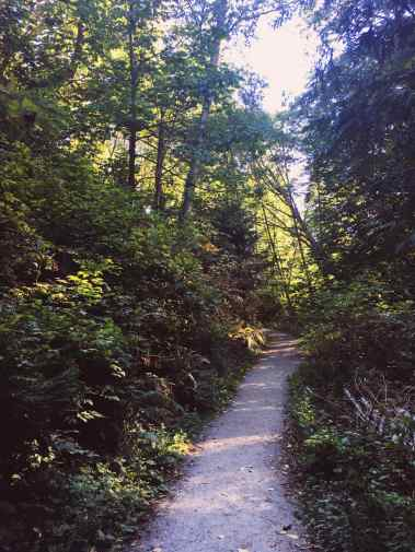 Hiking in Carkeek Park in Seattle, Washington.