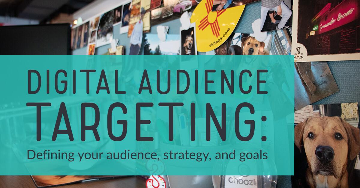 Digital audience targeting & tactics