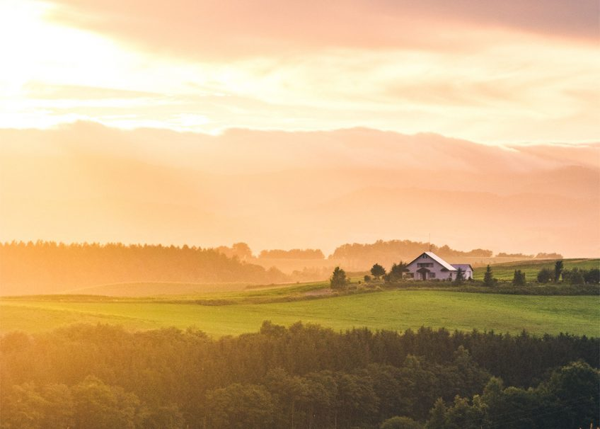 Hokkaido Summer Road Trip - Biei farmland