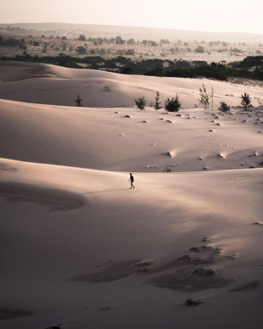 Soft Dunes - Chopsticks on the Loose print