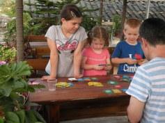 family game time: Dutch Blitz