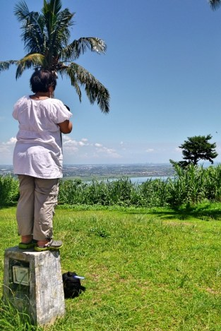 Perched Precariously! (Laguna)