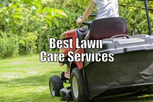 The Best Lawn Care Services Near Me