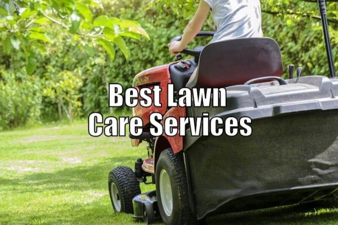 Best Lawn Care