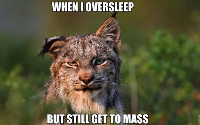 Sleep Mass