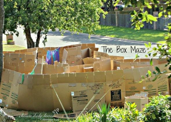 The Box Maze | Chosen Holy Loved