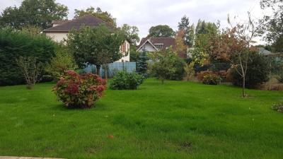 Chouette jardin - paysagiste création et entretien de votre jardin (41)