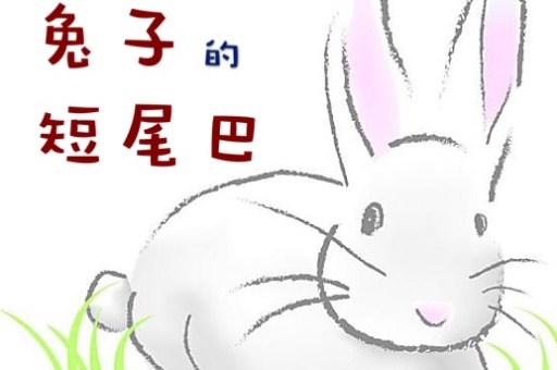 047 兔子的短尾巴