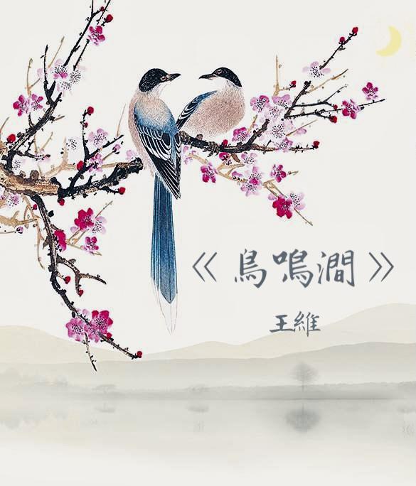 《蘇菲讀唐詩》11 鳥鳴澗 王維