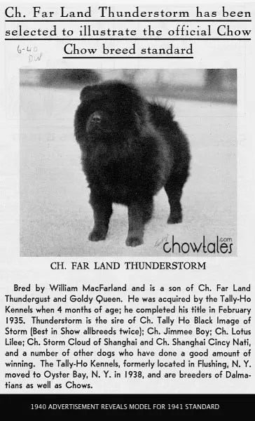 1940 CHOW STANDARD MODEL Tally Ho Kennels Far Land Thunderstorm