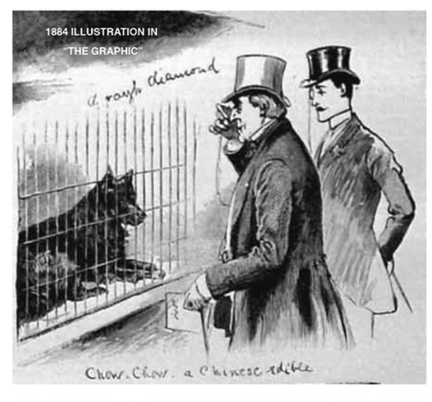This 1895 illustration from the Crystal show is one of the earliest records of chows being shown