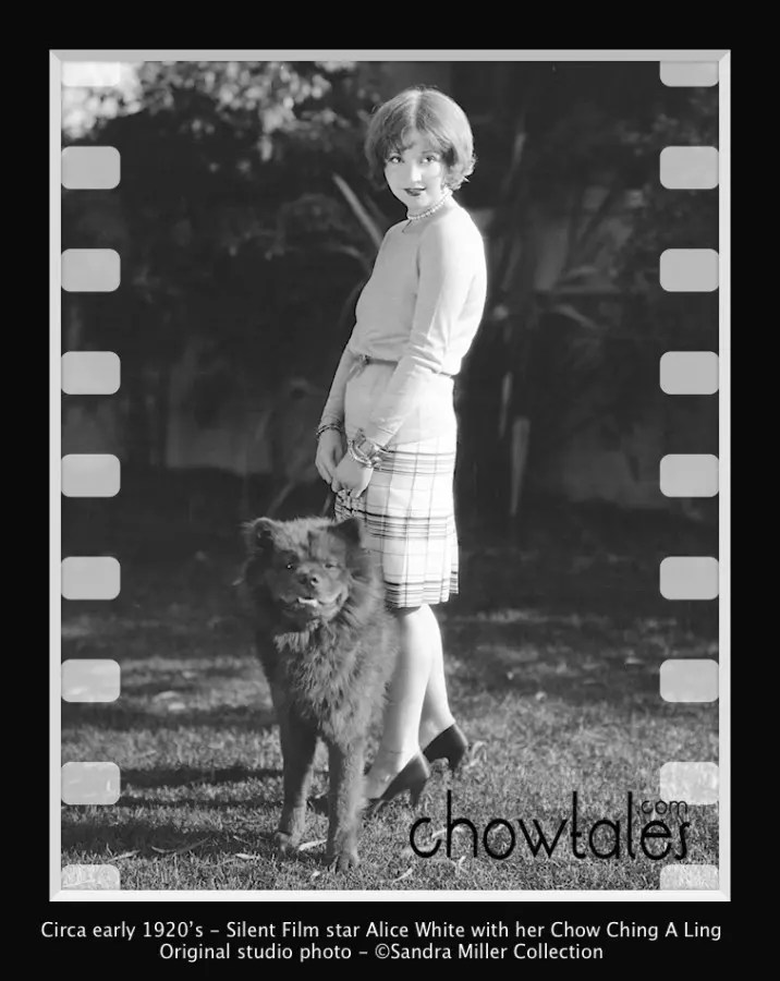 1920's Actress Alice White and probably Ching A Ling 8x10 original studio photo Back says Alice White National Star and her prize chow