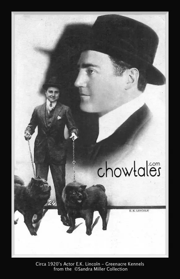 ARTIST E K LINCOLN & DOG US ACTOR CINEMA MOVIE POSTCARD