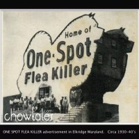 One Spot Flea Killer-World's largest Chow doghouse