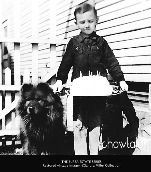BOOK BURBA BIRTHDAY CHILD BOY