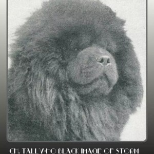1939 second national winner