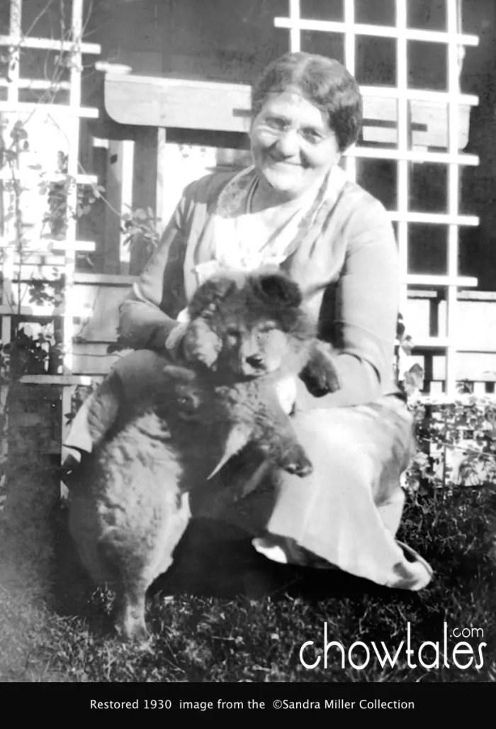 1930 Yen Sen puppy 52015-04-27