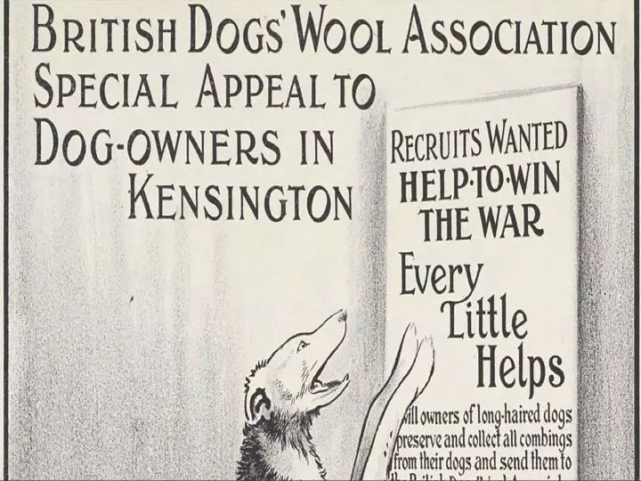 BRITISH DOG WOOL APPEAL FOR FUR