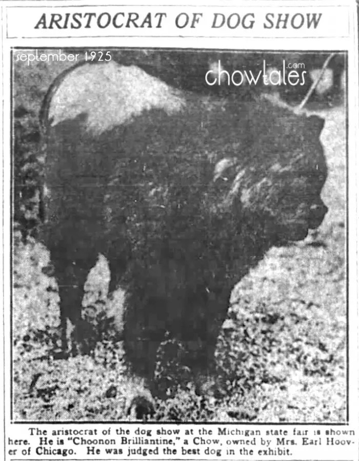Choonam Brilliantine Sept 9, 1925 Best in Show Michigan State Fair