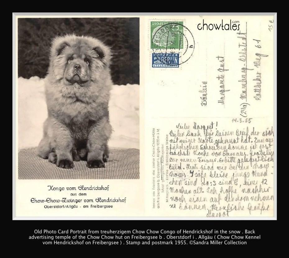 chow chow hutte 1955 postcard