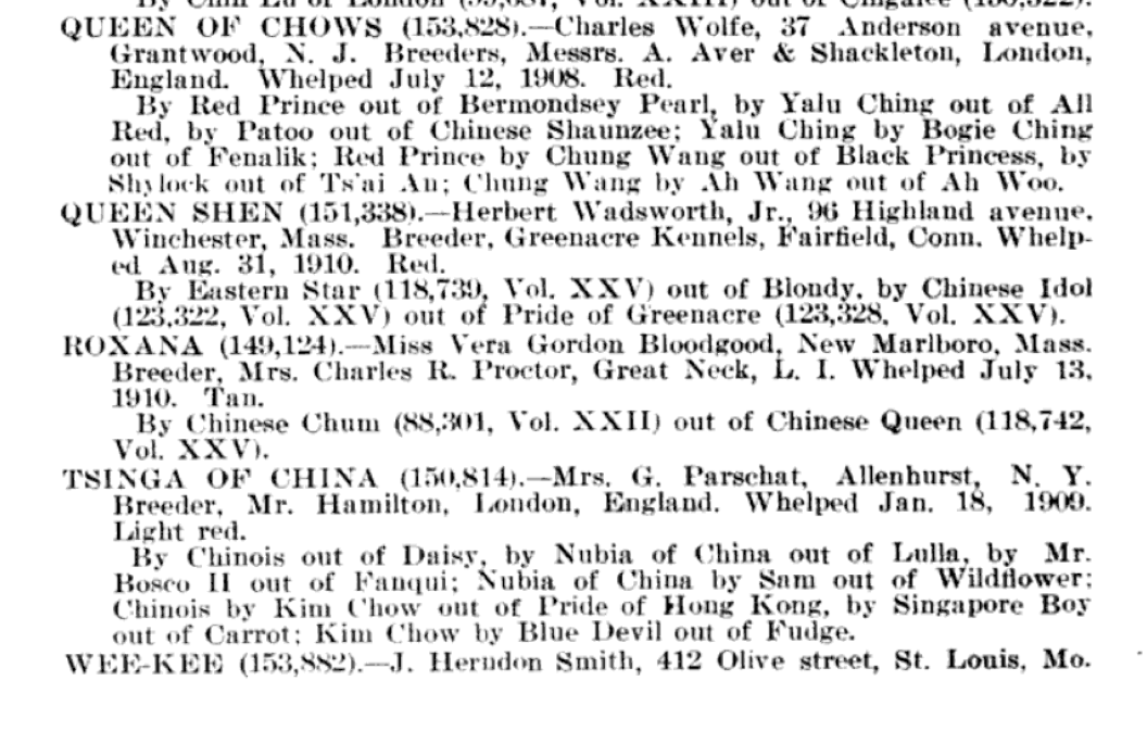 1911 AKC STUDBOOK CHOW ENTRIES