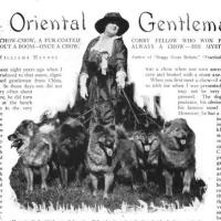 1914 House and Garden-An Oriental Gentleman-article