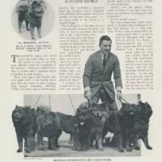 "SEPTEMBER 30, 1924 THE AMERICAN KENNEL GAZETTE CLASSIFIED ADS FROM SAME ISSUE AS THE EUGENE BYFIELD ARTICLE ""THE CHOW IN MERRIE ENGLAND"""