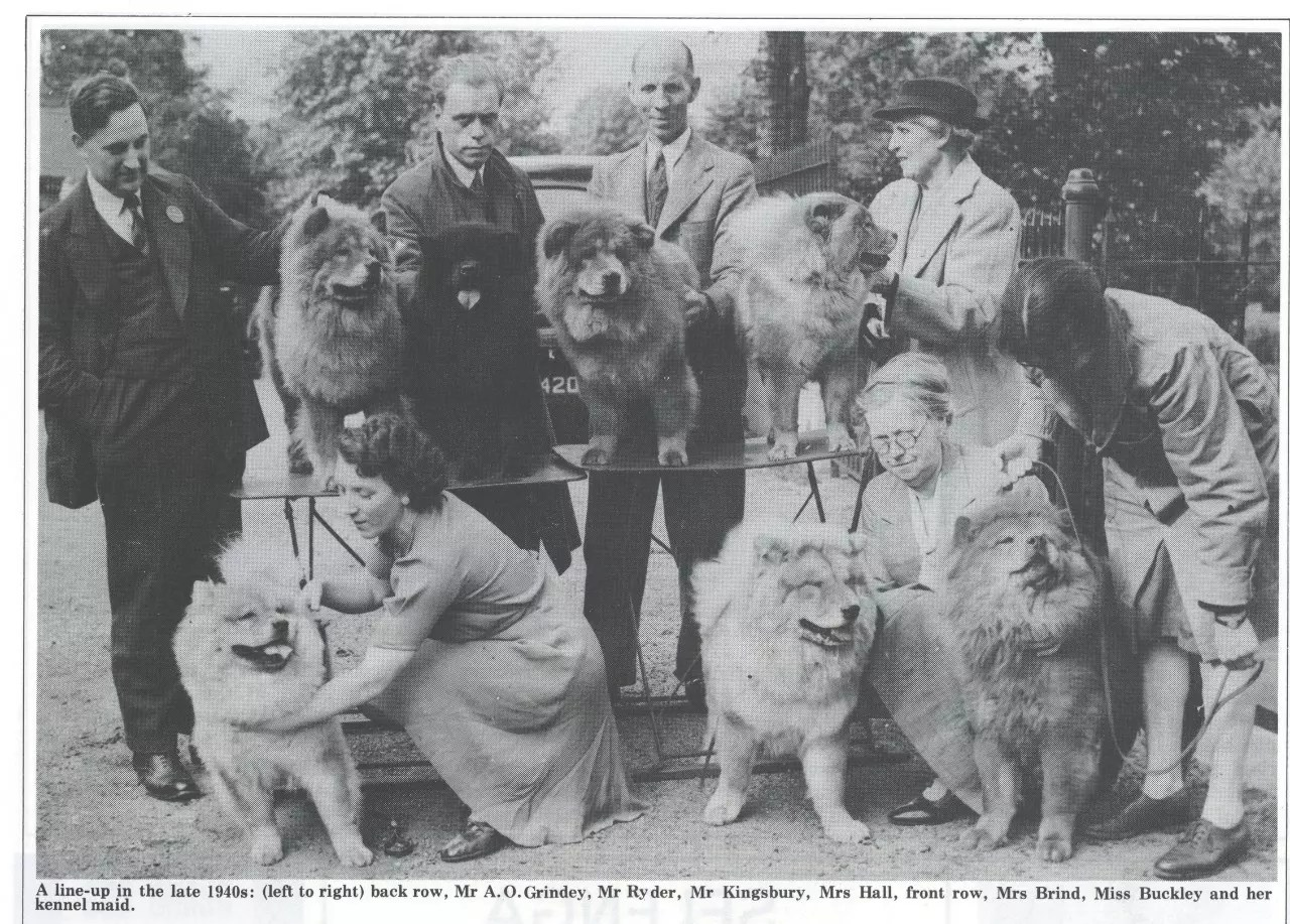 P-4-IMAGE Kennel Gazette Feb 1985 founding of Chow Chow Club UK - Version 2