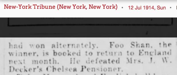 1914 Foo Shan return to England