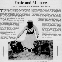 Sandra Miller Collection -PRE 1930  AMERICAN MAGAZINE ARTICLES