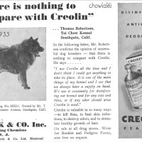 Pre 1960's Chows featured in dog food and grooming advertisements