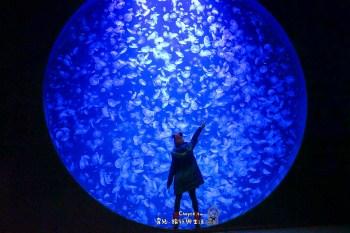 山形縣鶴岡親子共遊景點推薦:加茂水族館 Kamo Aquarium 東北高速巴士週遊卷