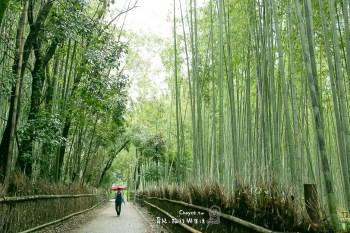 清晨無人嵐山竹林之道 野宮神社 無人狂自拍很可以 黑木鳥居 源氏物語