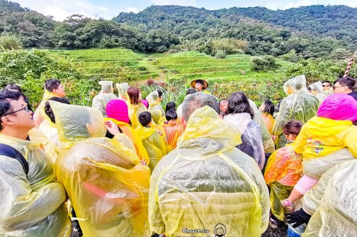 親近土壤的喜樂 與米食生活更貼近 農糧署米食樂體驗營