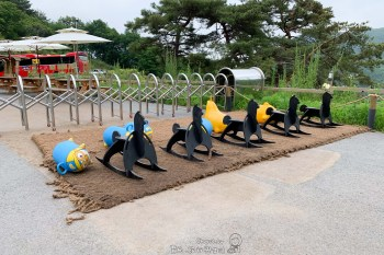 首爾 親子自助行 拜訪萌物教主草泥馬牧場 牽著草泥馬散步 老少咸宜的體驗