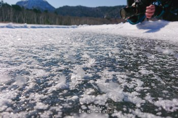 不要管櫻花了 你看過冰花嗎?Miracle Secret of Frost Flower 東北海道神奇風景 阿寒湖 屈斜路湖冬景限定 フロストフラワー