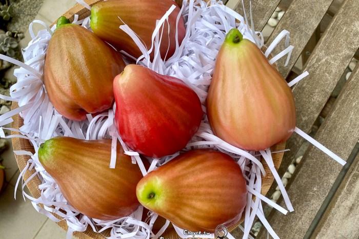 蔬菜水果保存有一套 美國好物開箱【Bluapple】VeggieZips蔬果保鮮袋