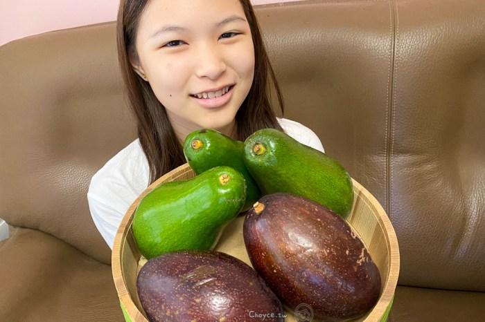 酪梨盛產正當時 Avocado 怎麼吃 三種美味吃法