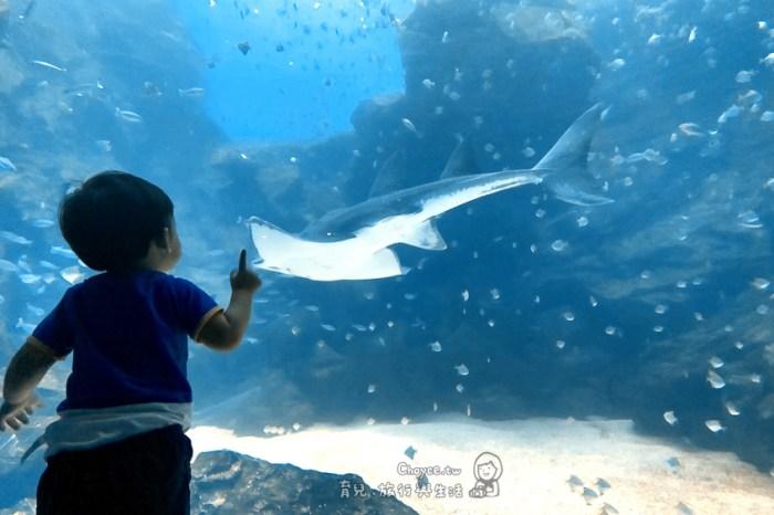 桃園水族館Xpark都會型水生公園 橫濱八景島 門票.交通.參觀重點.場館介紹 有企鵝脫逃影片