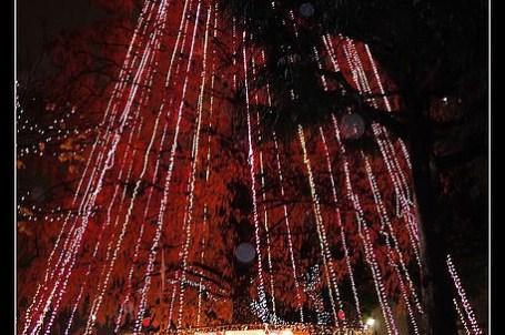 (日本) 20101213 廣島 Dreamination 2010
