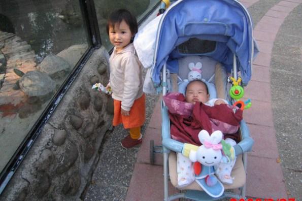 子喬子鈞逛動物園