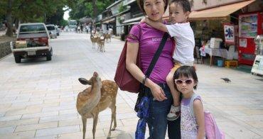 (網友來信) 帶嬰兒去日本旅行,推車、副食品、尿布
